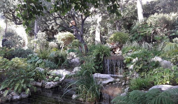 Le Jardin Méditerranéen | Créa Concept Valence